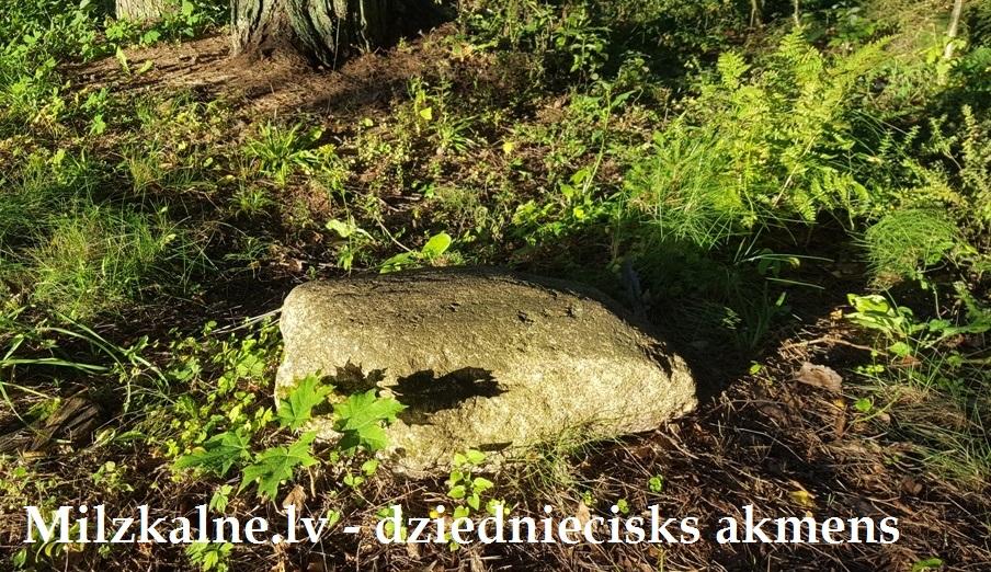 Dziednieciskais akmens milzkalnē